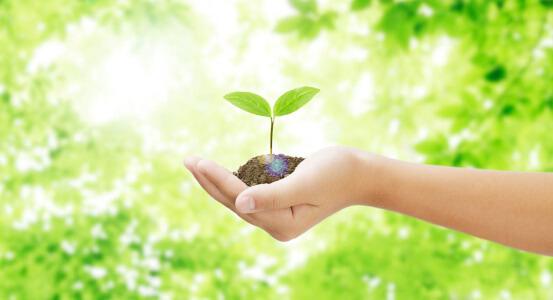 環境と社会への取り組み イメージ