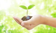 環境と社会への取り組み リンク